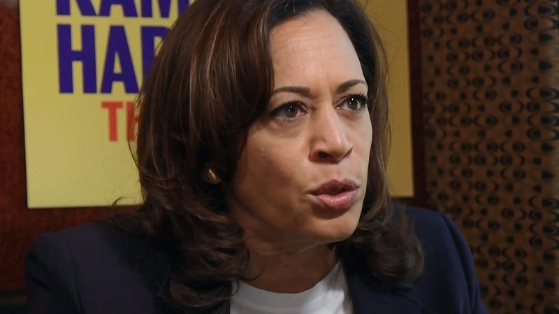 Kamala Harris Calls Trump's Targeted Roundups of Undocumented Immigrants 'A Campaign of Terror'