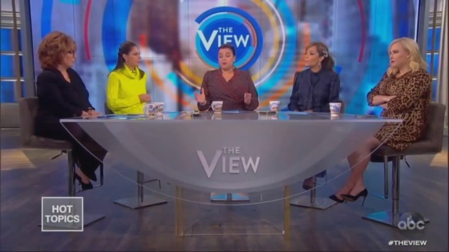 Meghan McCain Sulks During 'View' Clash: 'I'm Just Trying to Make a Point'