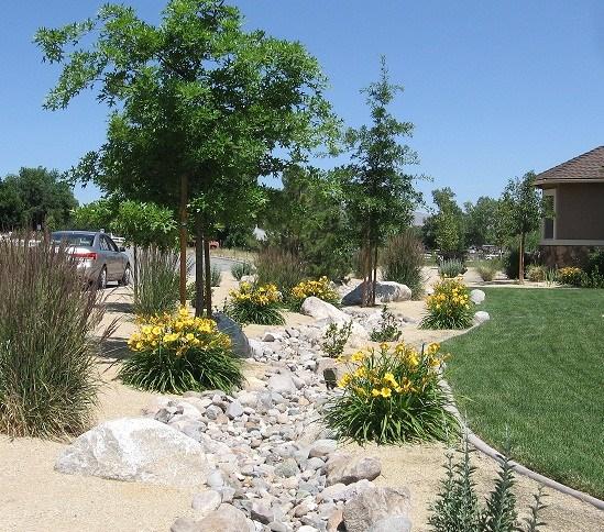 reno green landscaping