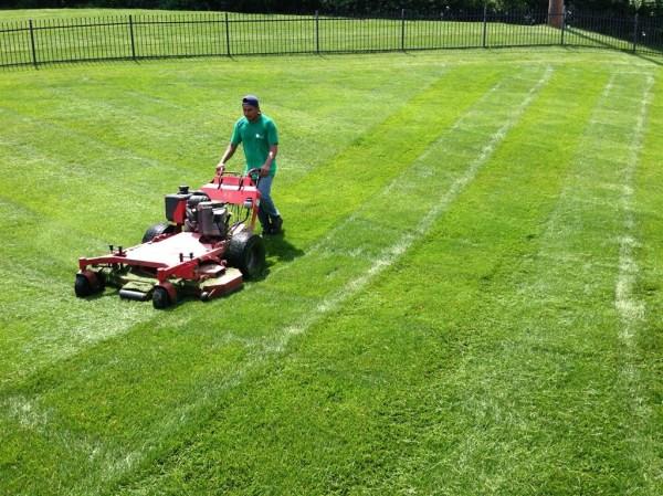 elite lawn services jordan wells