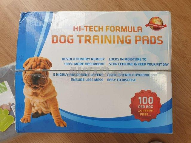 tapis educatif pour chien