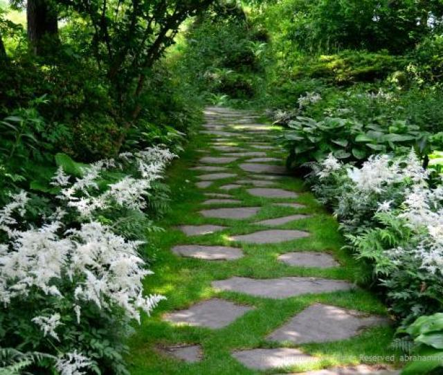 The Rhythm Of Using White Astilbe And Hostas Repeatedly Draws You Into The Garden And Down This Path