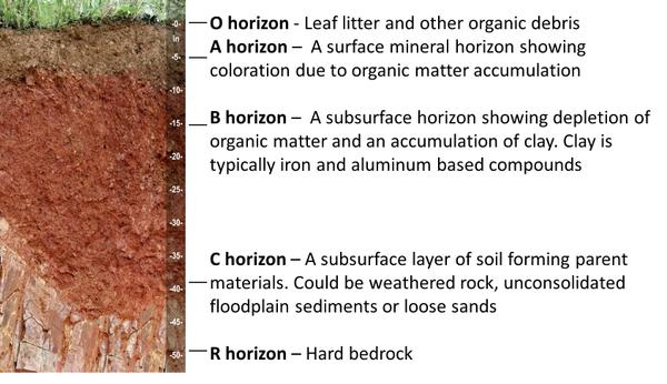horizon diagram soil formation volvo wiring diagrams 740 1 soils and plant nutrients nc state extension publications horizons