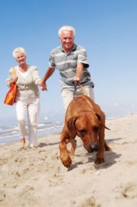 senior couple with dog at the beach