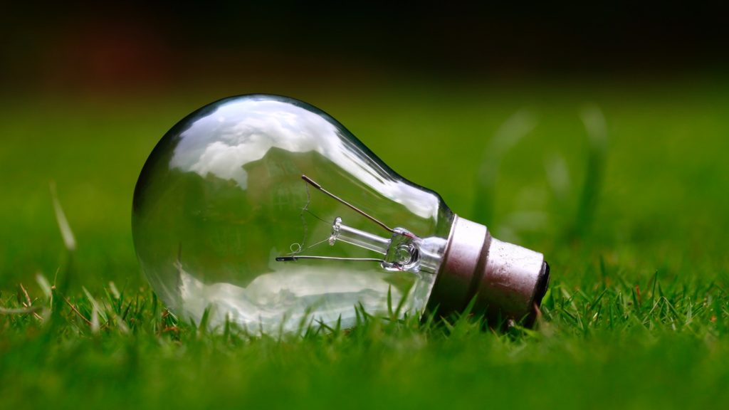 A light bulb sitting in green grass.