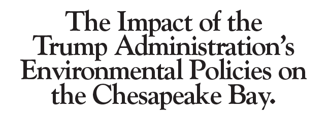 The Impact of the Trump Administration's Environmental Policies on the Chesapeake Bay.