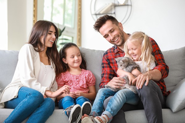 How having a pet can change your life family and cat
