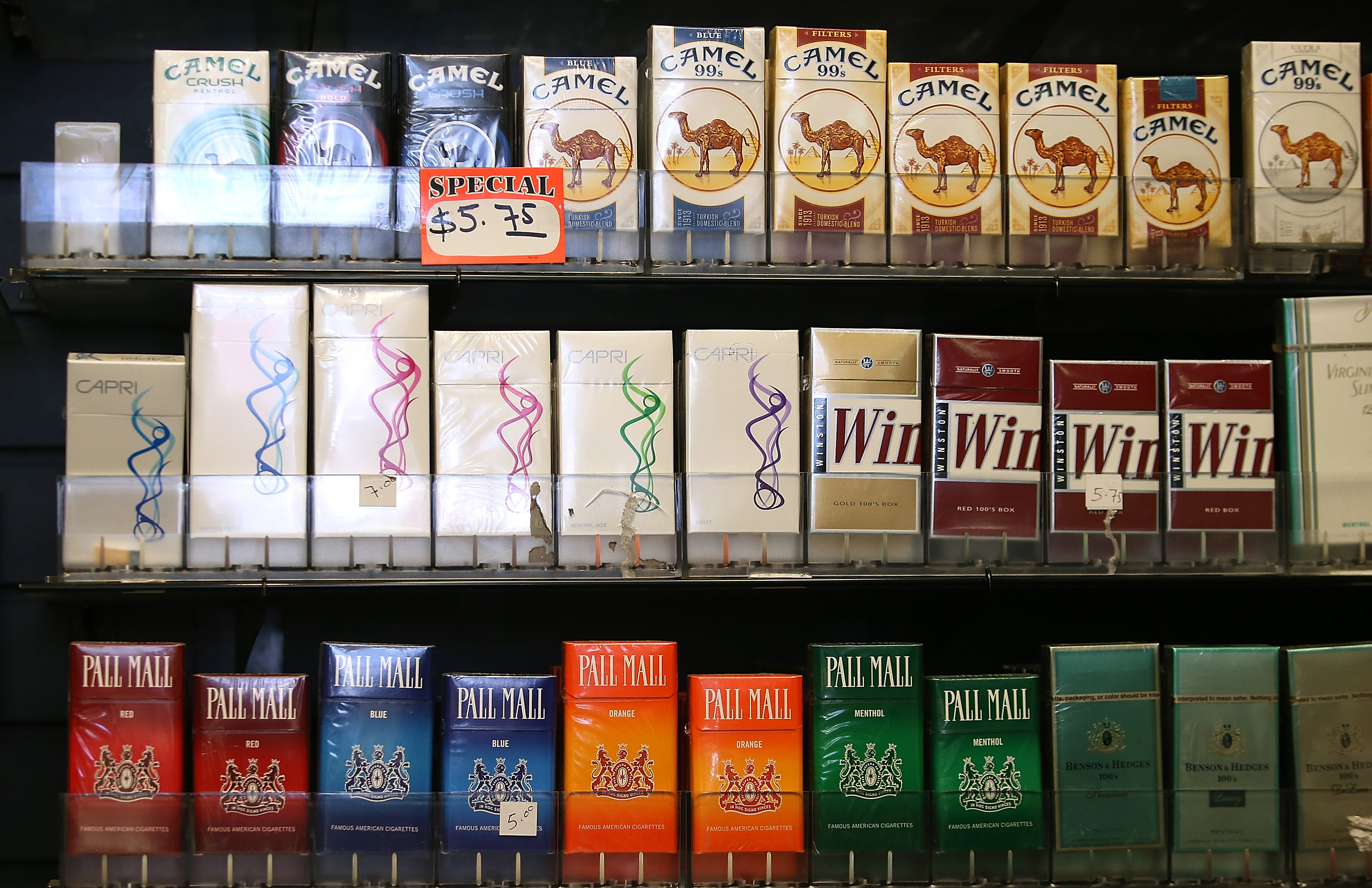 Who Big Tobacco Causes Massive Harm To The Environment