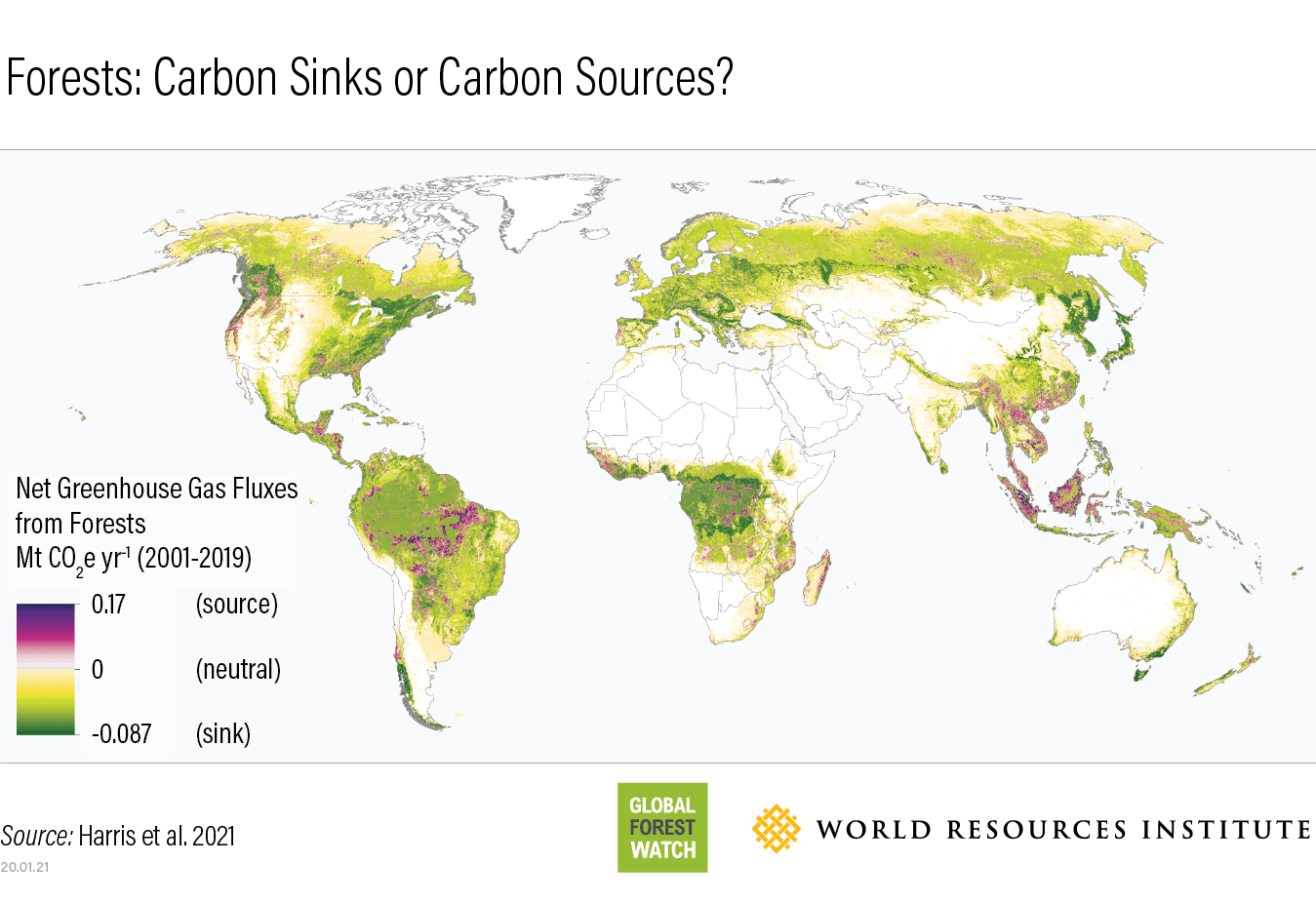 The world resources institute, which tracks global forest cover, reports. Forest Carbon Flux Data Explained Global Forest Watch Blog