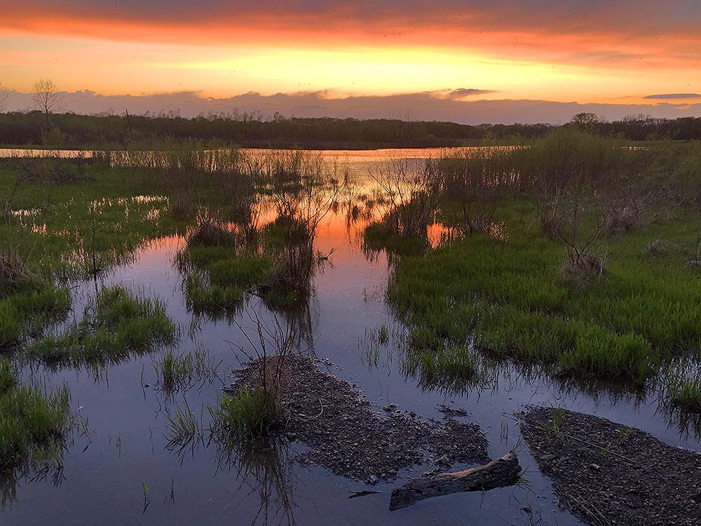 Kendzora Conservation Area