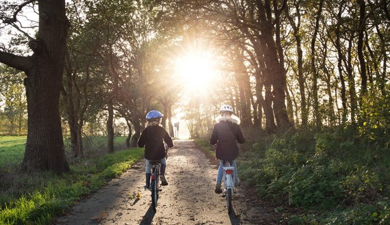 two children cycling along a path pictures from behind