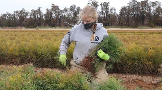 Member working in a field