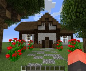 Minecraft Cottage : 6 Steps Instructables