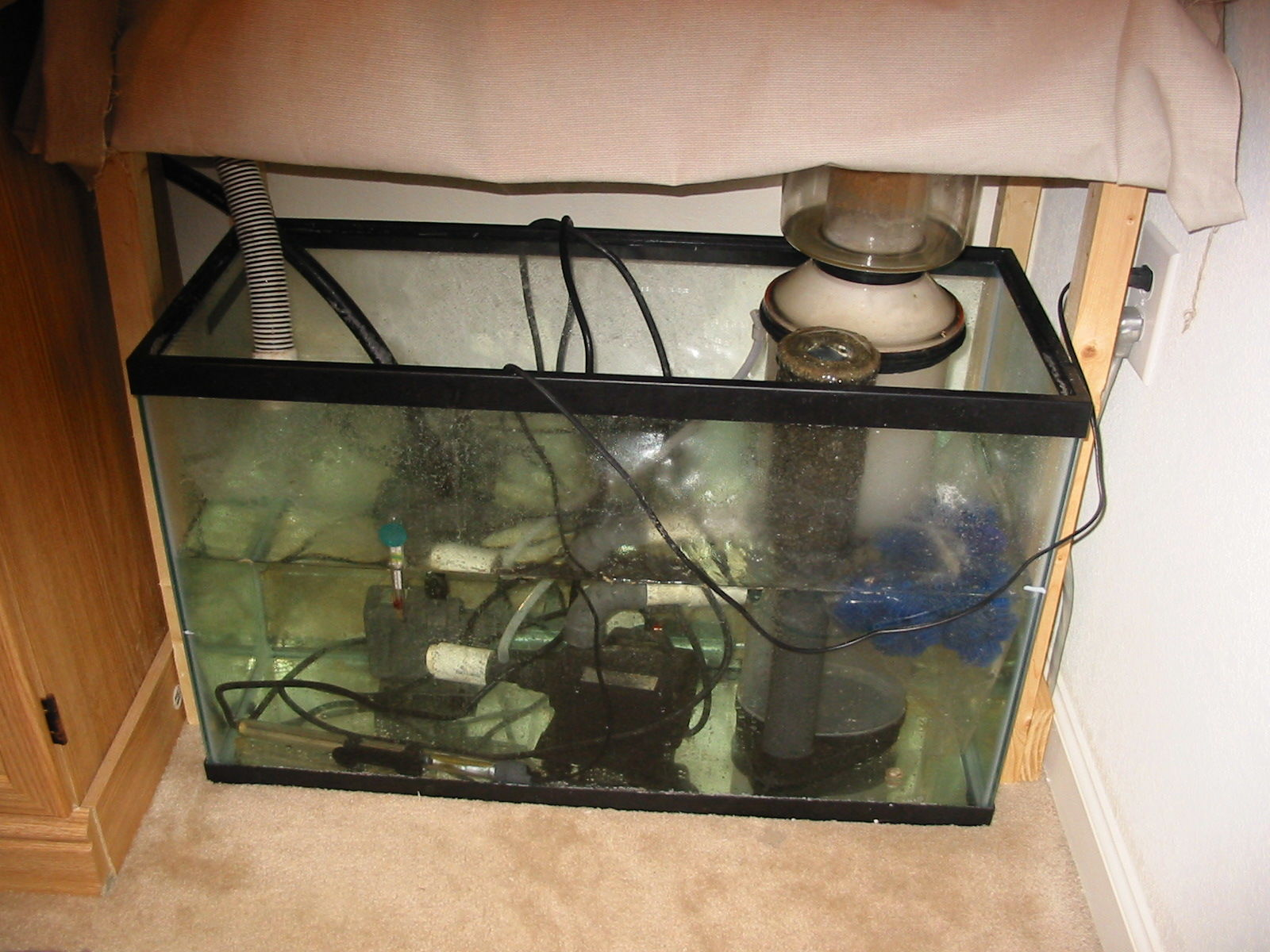 30 gallon sump community