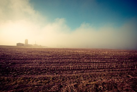 Plains: photos by Johnny Lucus