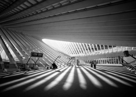 Titan – photos of Calatrava's Liège-Guillemins train station by Vincent Botta