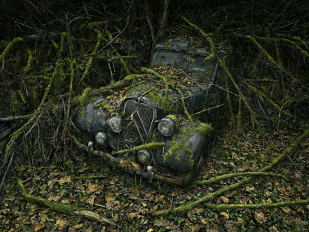 Paradise Parking 08 – photos of abandoned cars by Peter Lippmann