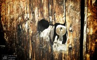 Photo blog photo: 'Old weathered door, Granada'