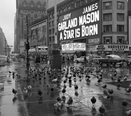 Historic New York street scenes, discovered after nearly 50 years