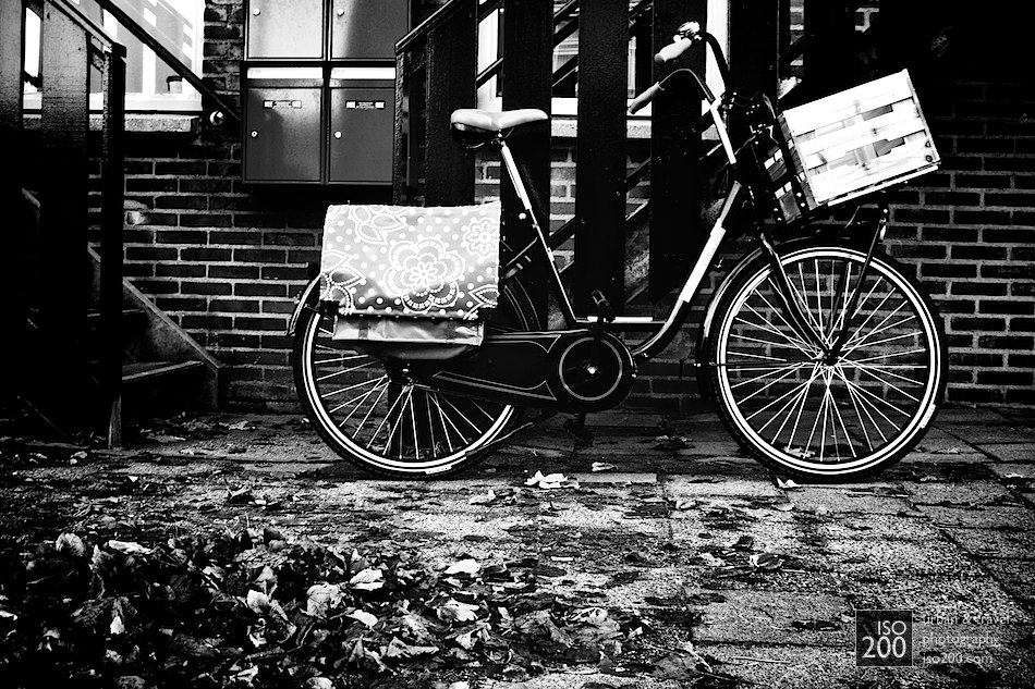 Bicycles are absolutely everywhere in Holland - it's nice to be somewhere that's not overwhelmed with cars.