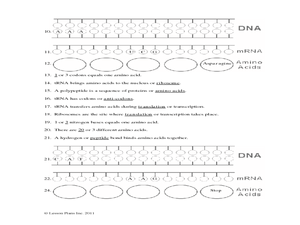 Protein Synthesis Worksheet 9th  12th Grade Worksheet  Lesson Planet