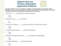 Subject Verb and Pronoun Antecedent Agreement Problems 2nd ...