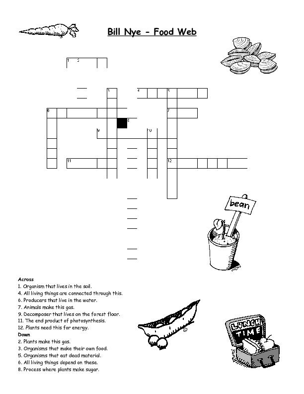Food Web Worksheets For 5th Grade   Foodfash.co