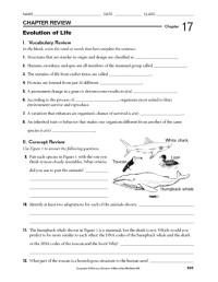 Printables. Natural Selection Worksheet. Ronleyba ...