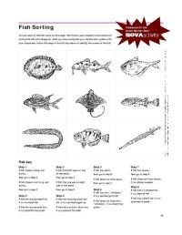 All Worksheets  Dichotomous Key Worksheets - Printable ...