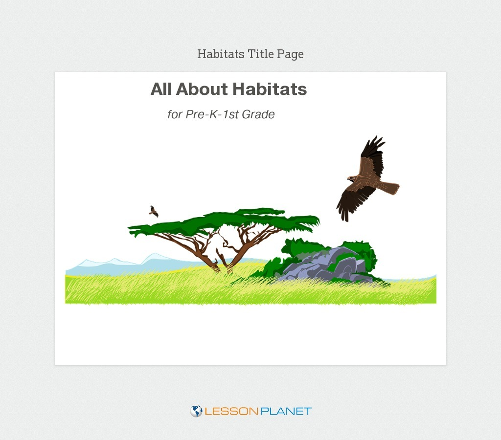 hight resolution of Animal Homes Lesson Plans \u0026 Worksheets Reviewed by Teachers