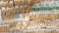 الديوانة تحجز 47 ألف أورو في حوزة جزائريين