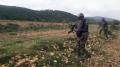 جندوبة: إيقاف 4 أجنبيين حاولواإجتياز الحدود خلسة