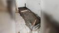جريمة حي التضامن: المشتبه به في قبضة الأمن
