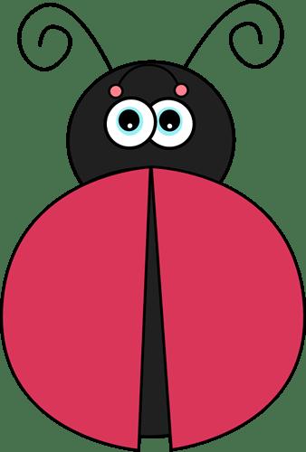 Ladybug without Spots