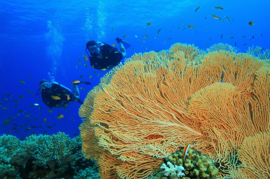 Phuket Liveaboard Dive Sites