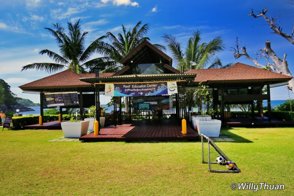 Activity center: Snorkeling, Kayaking and Diving!