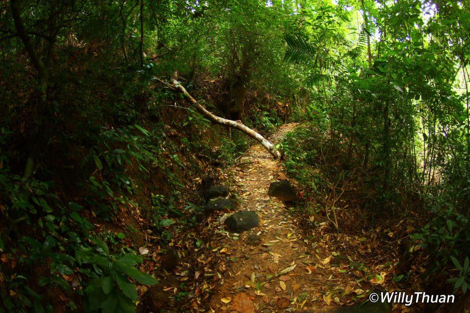 kathu-waterfall-5