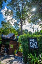three-monkeys-phuket-2