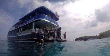 local-dive-thailand-6