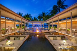 palm-seaside-phuket