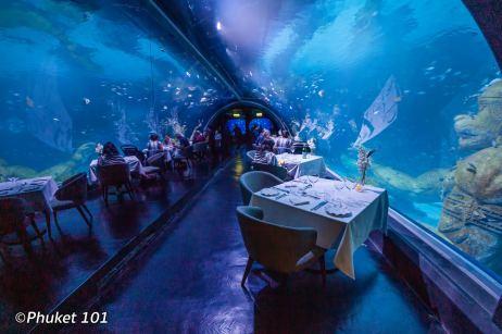 andasi-at-aquaria