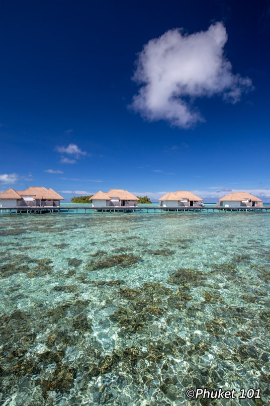como-maalifushi-resort-maldives-6