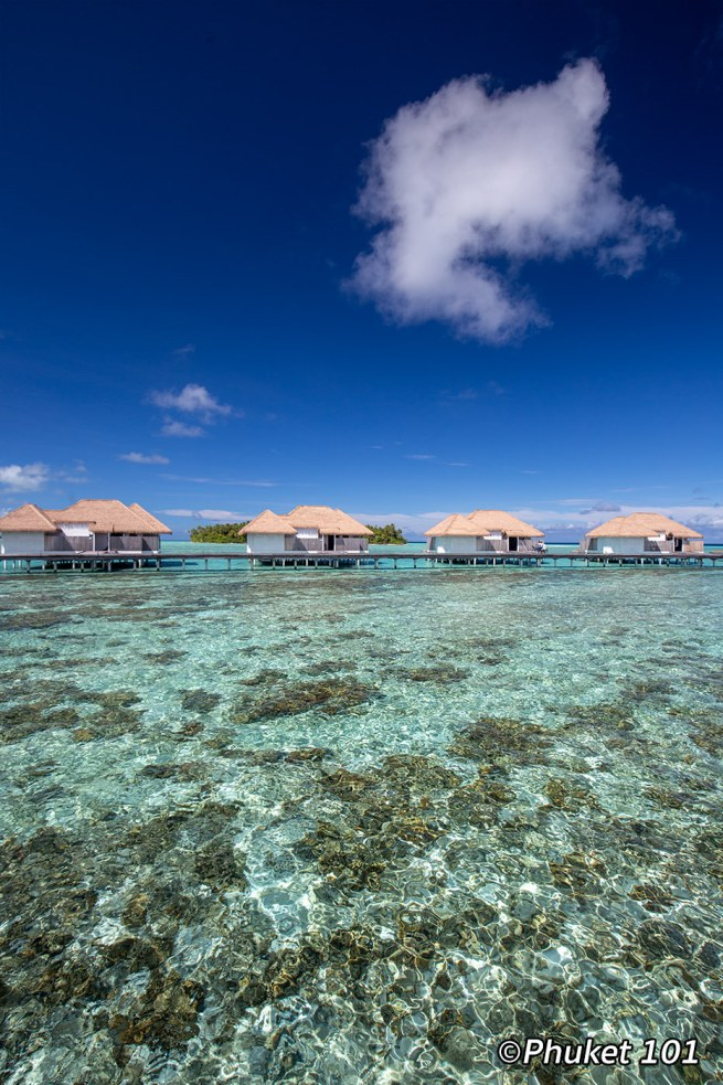 como-maalifushi-resort-maldives-6