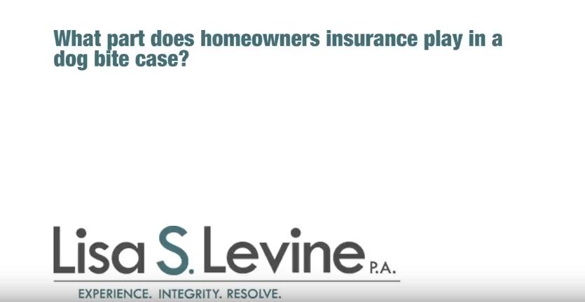 What part does homeowners insurance play in a dog bite case?