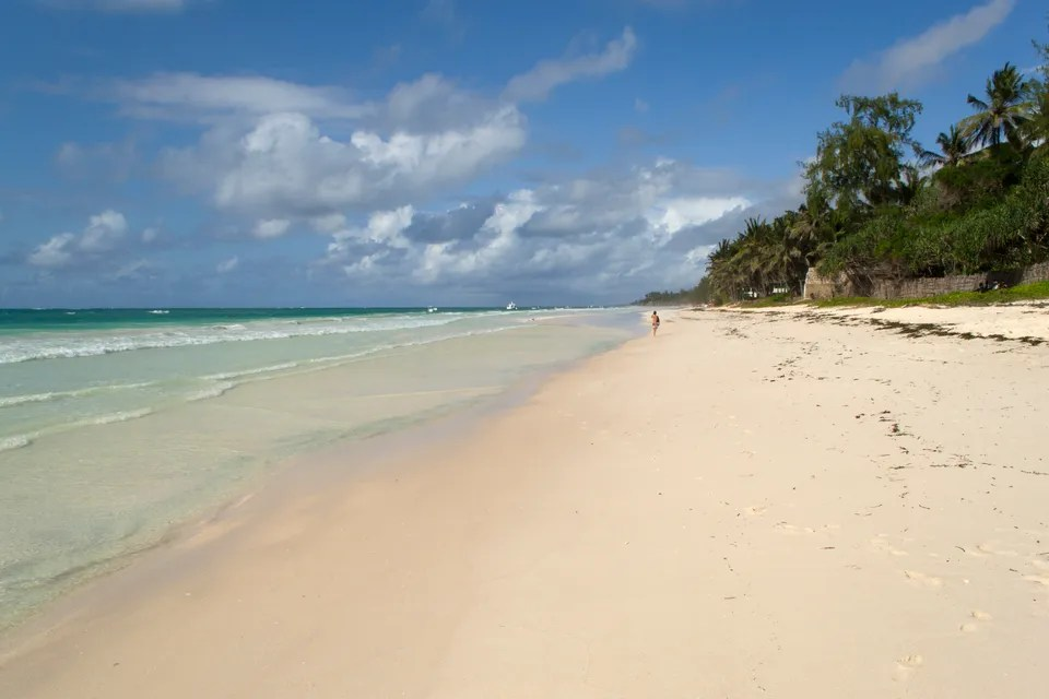 รีสอร์ทที่ผิดปกติสำหรับวันหยุดฤดูหนาวในทะเล หาดเคนยา: มอมบาซา, ลามะและไม่เพียง