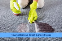 tough carpet stains - Home The Honoroak