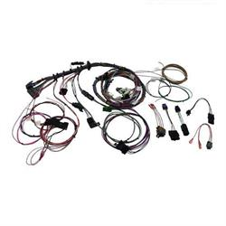 Painless Wiring 60509 1999-2002 GM LS1 Engine Harness