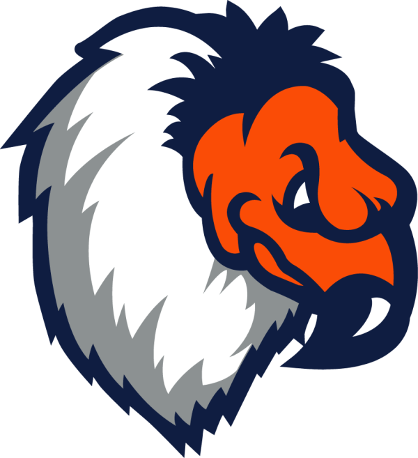 Bakersfield Condors Partial Logo American Hockey League
