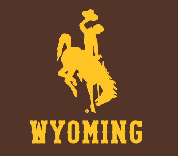 Wyoming Cowboys Alternate Logo - Ncaa Division U