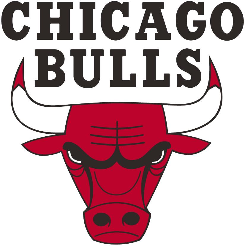 chicago bulls primary logo